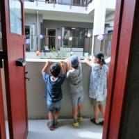 写真:中庭を挟んで向かいの住戸の様子が伝わります