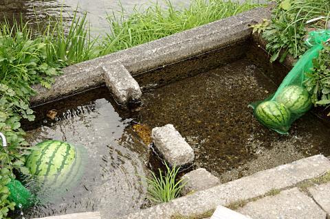 写真:生活用水に冷えた西瓜