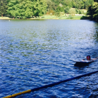 写真:山の中の池で泳ぐ